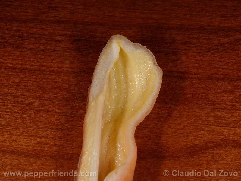 jay-peach-ghost-scorpion_002_frutto_10.j