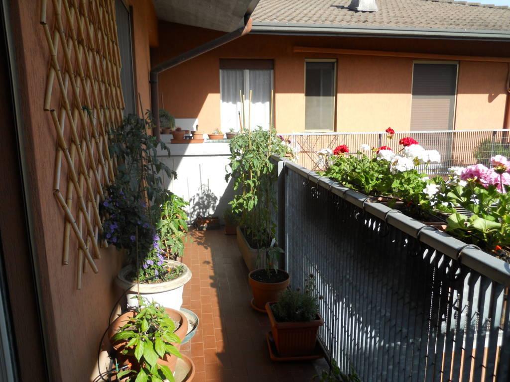 Irrigazione automatica del balcone irrigazione - Irrigazione balcone ...