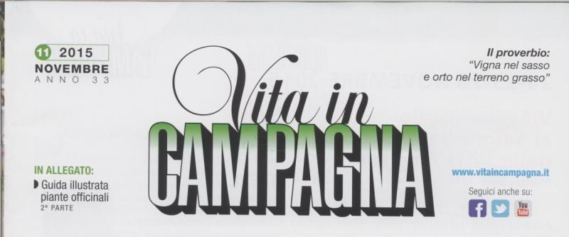 VITAINCAMPAGNA3.jpg
