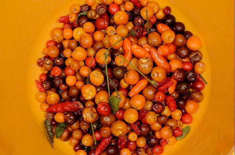 fruttisecchi.jpg