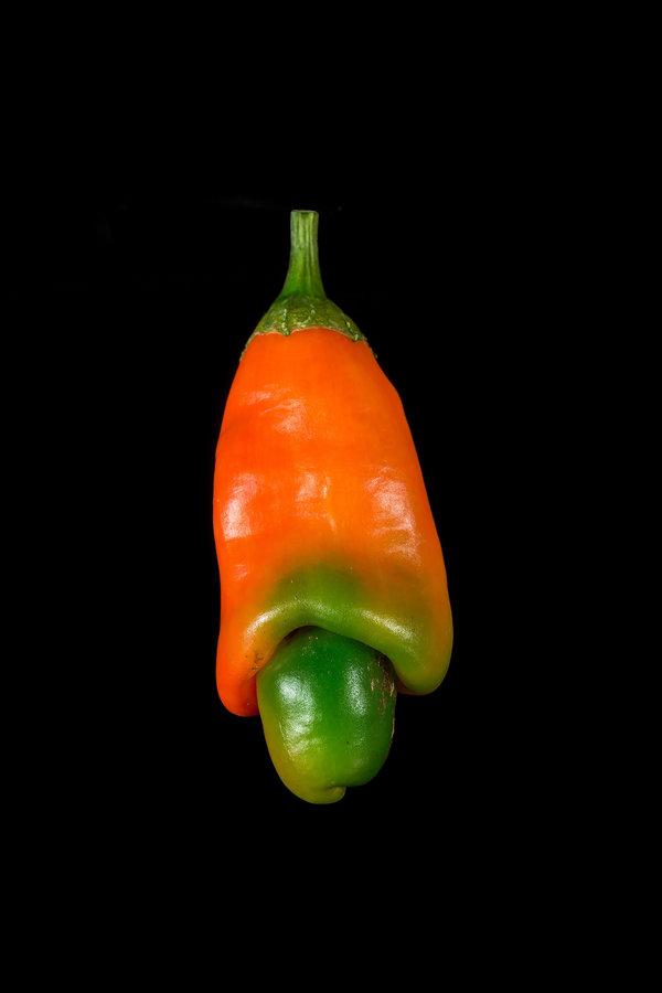 Peter-Pepper--.jpg.a6441d10617632a6beb4b2c38f4d46d8.jpg