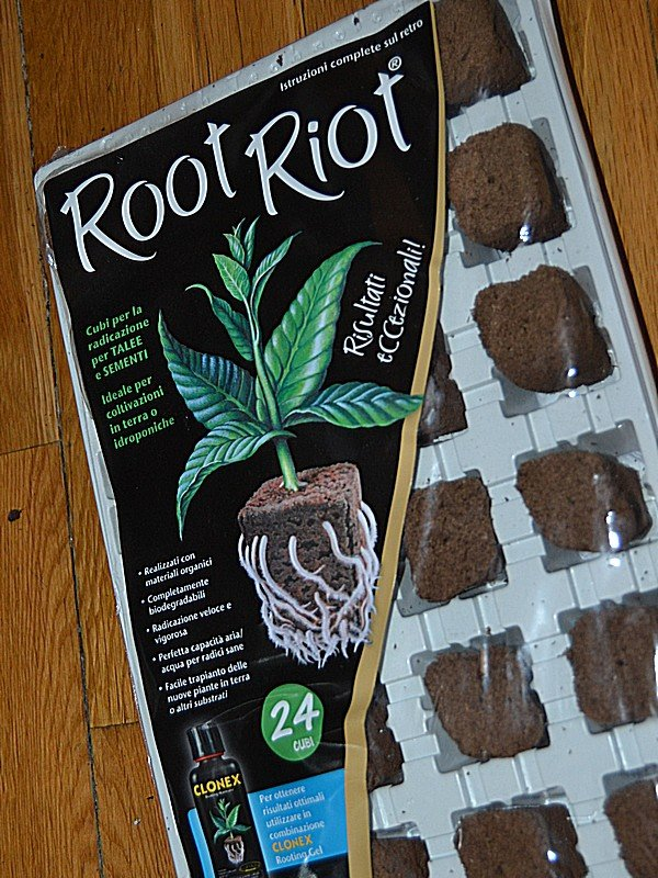 102 Root Riot.jpg