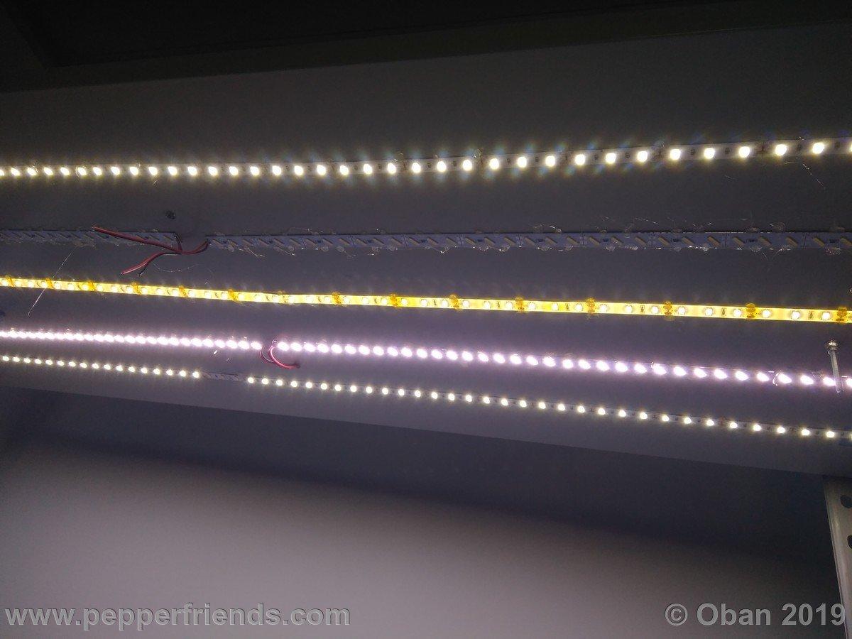 Scaffale LightBox a LED 1.0 - 84.jpg