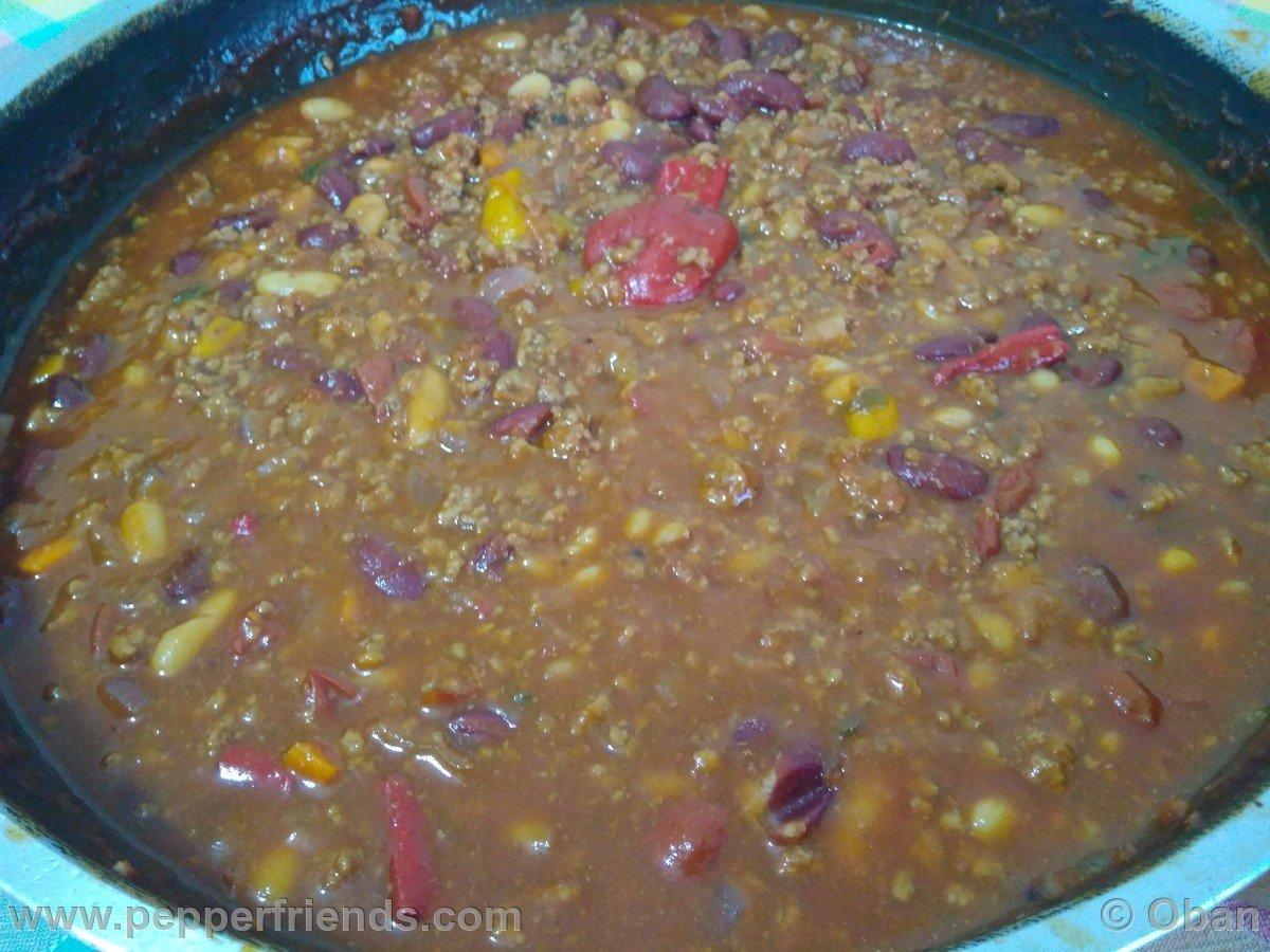 Chili Con Carne & Fagioli - 04.jpg