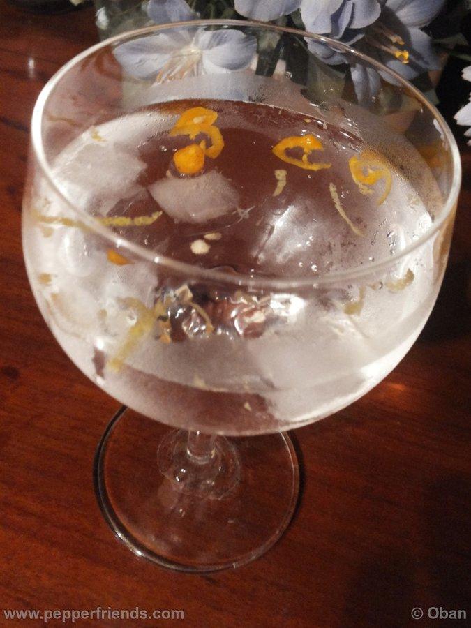 Gin Tonic & Aji Cito.jpg
