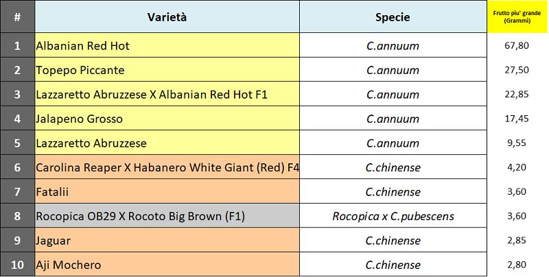 04 Varietà con frutto piu' grande.png