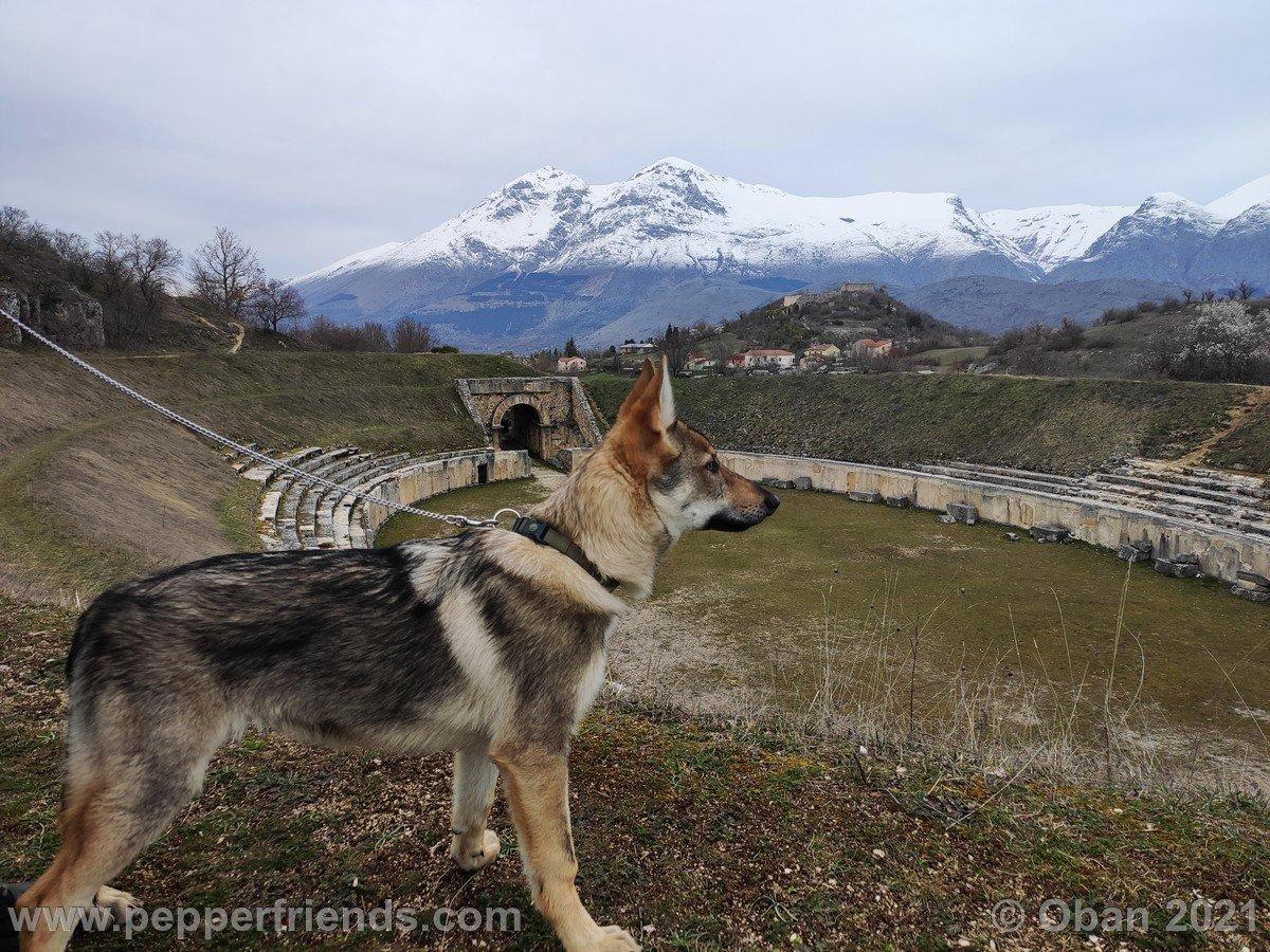 Alba Fucens Con Kyma - 04.jpg