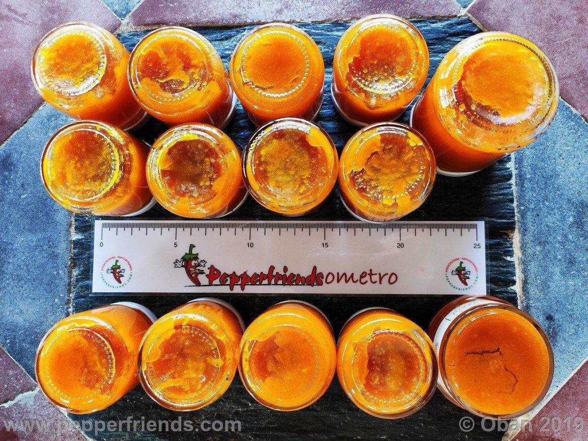 Marmellata Di Jamarillo - 09.jpg