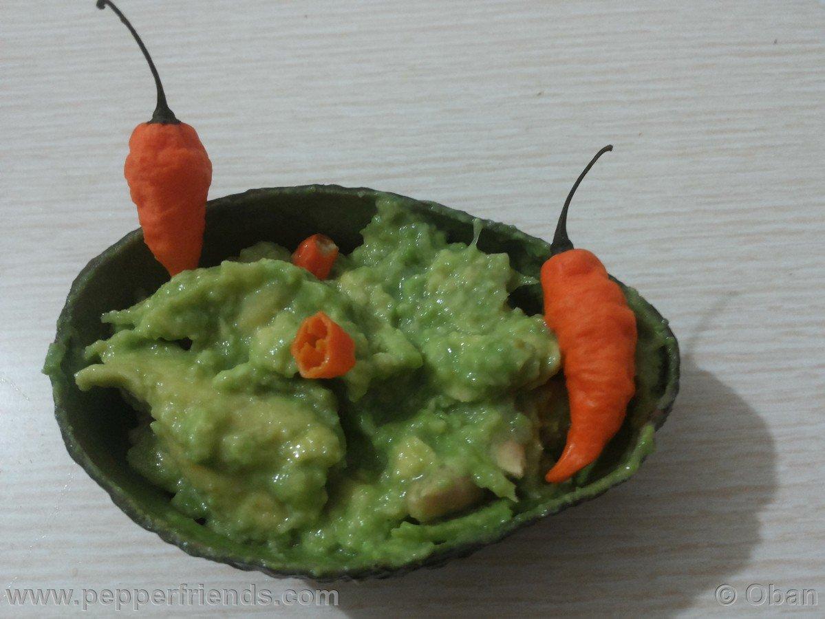 Chili-stuffed peppers & Guacamole - 07.jpg