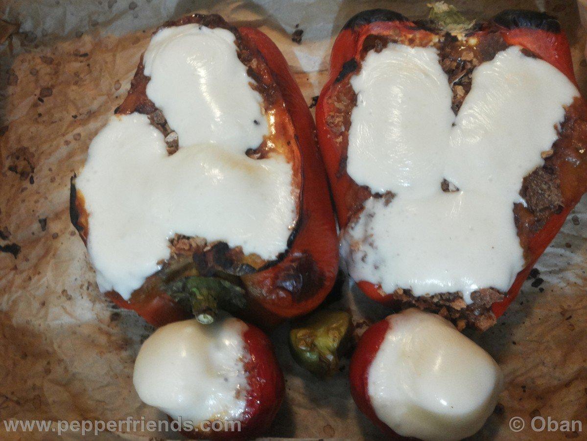 Chili-stuffed peppers & Guacamole - 14.jpg